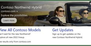 multimedia-ad-with-sitelinks